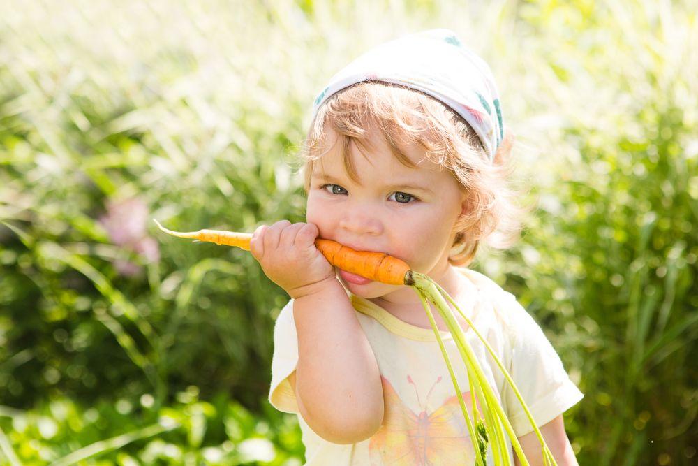 enfant vegetarien